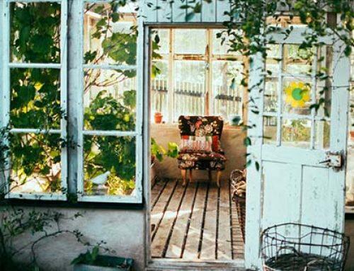 5x tips voor een gifvrij huis!